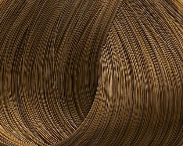 golden-honey-673-dark-blond-xantho-ntore
