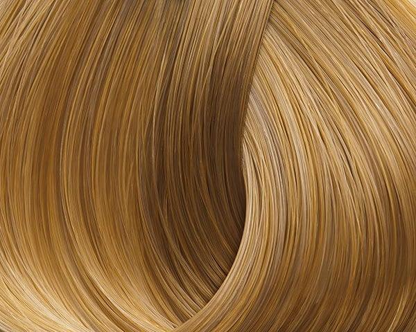 golden-honey-93-very-light-golden-blond-xantho-poly-anoichto-ntore